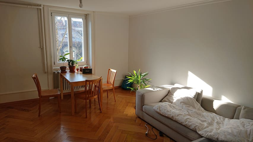 Charming and sunny 3-room flat in Breiteinrain