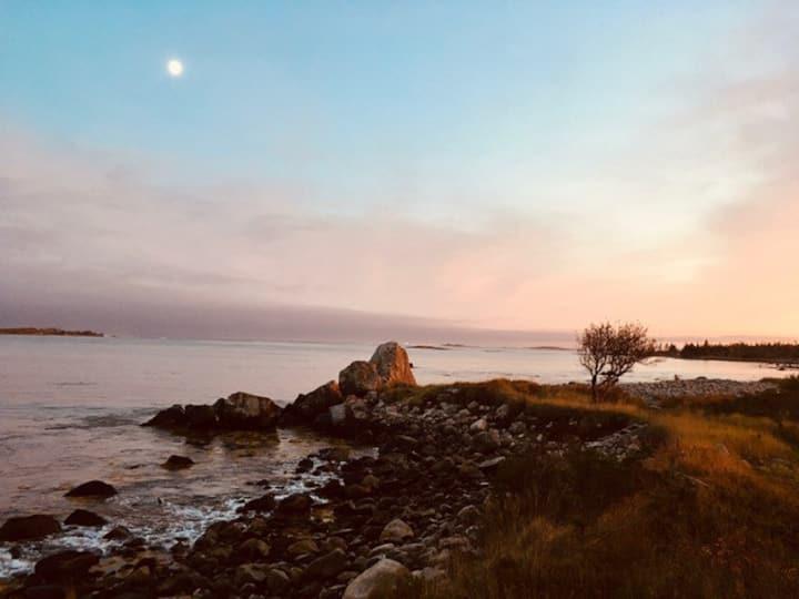 Splashing Seal Oceanview Retreat