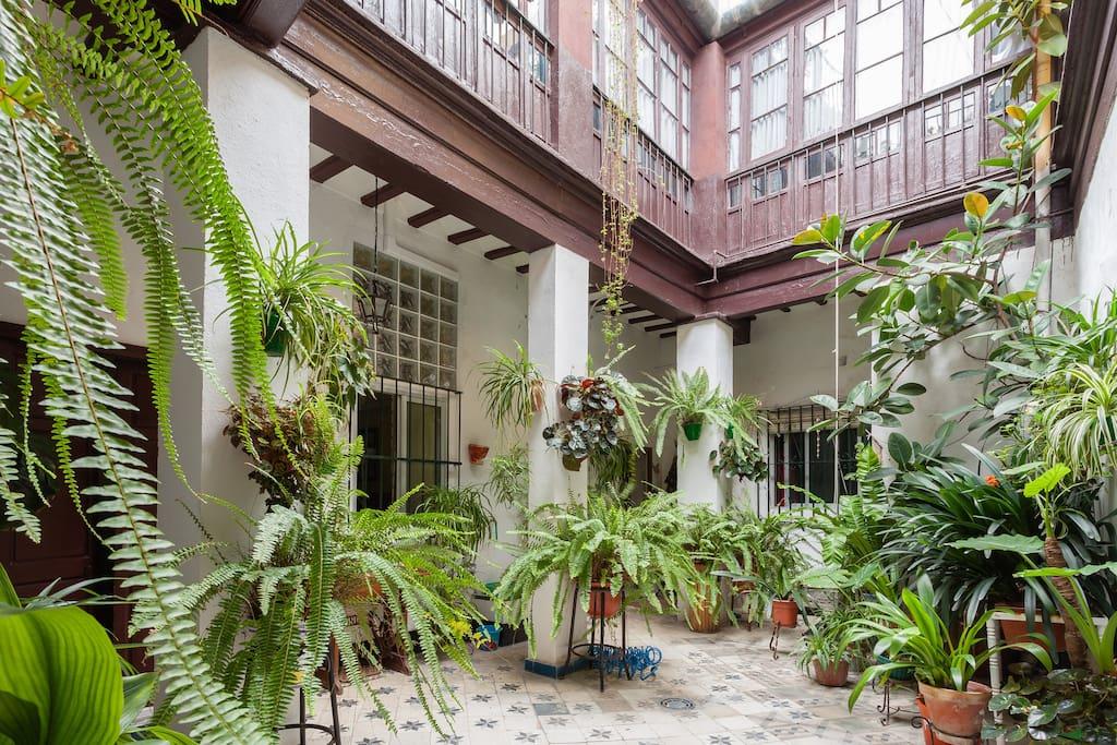 Casa tipica andaluza casas en alquiler en jerez de la - Casas tipicas andaluzas ...