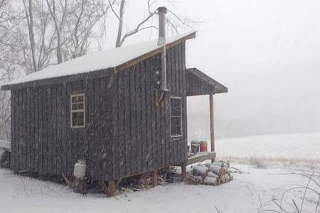 Secluded Cabin Artist Retreat #2 - Wellsburg - Cabane