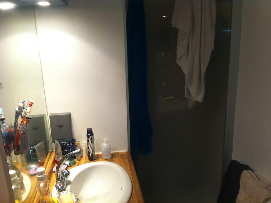 une salle de bain équipée d'une grande douche