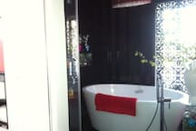 separate soaker tub and shower with private wc