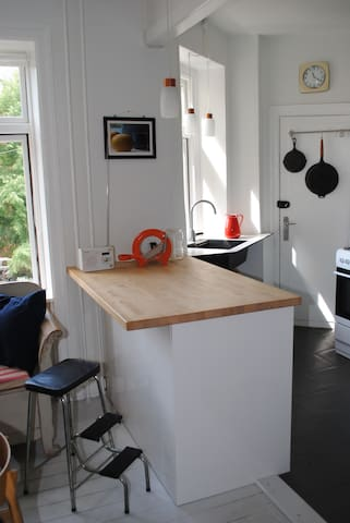 The kitchen / first living room