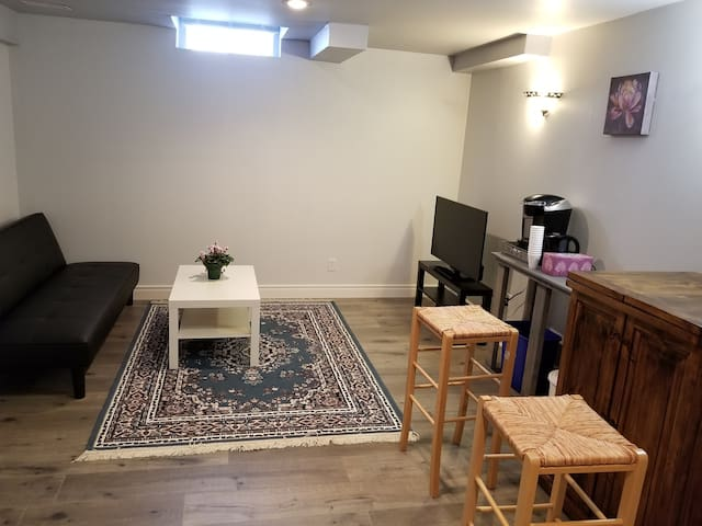 One bedroom basement apartment - private entrance