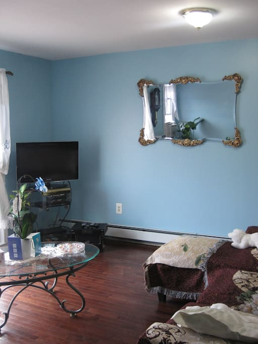 Cozy And Calm Apartments For Rent In Brooklyn New York United States