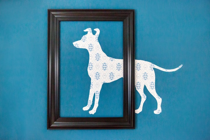 """[Vieux-Lille] Duplex """"2 Honden"""" Rue de la Barre"""