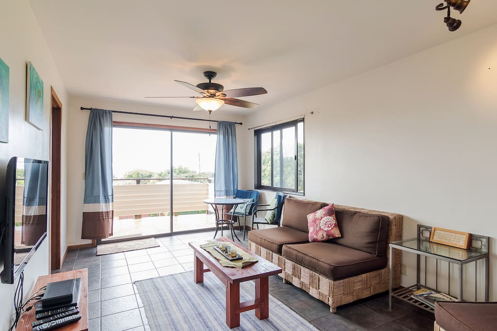 Living Room access to lanai
