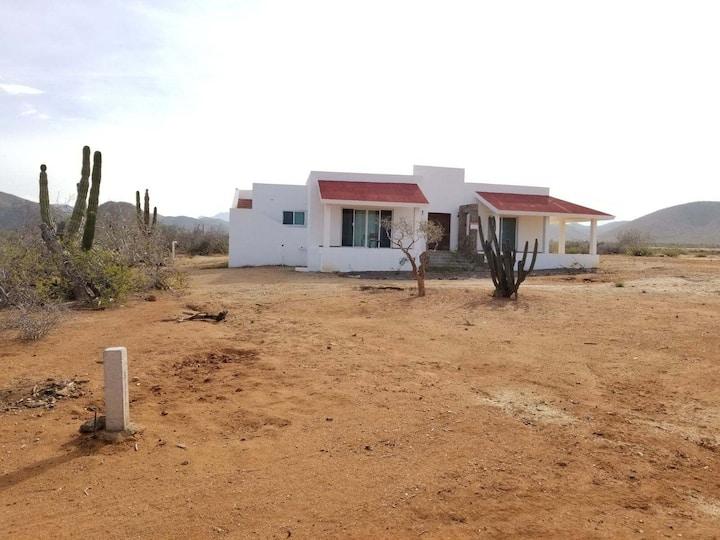 The Arizona Beach house