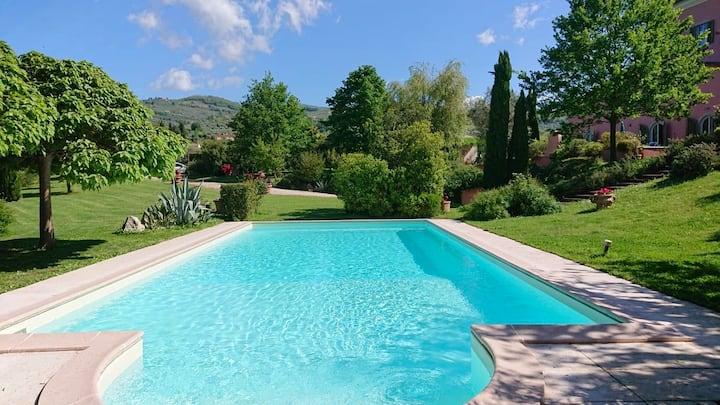 Costanza's Paradise