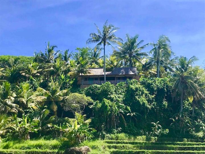 Full  Ocean view  Balian Prana Cliff house
