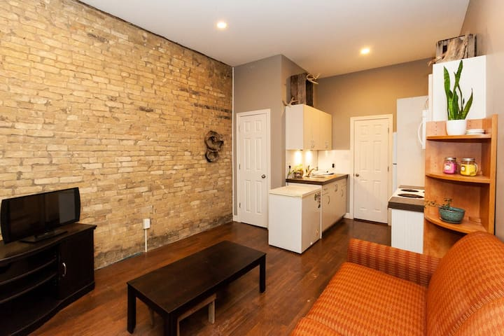 Cozy Rustic Downtown Space, sleeps 1-4 humans+Pet