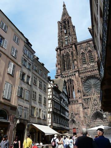 F1 cosy au pied de la cathédrale