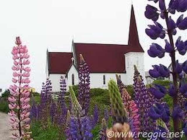 Lupins by the Sea - Stratford - House