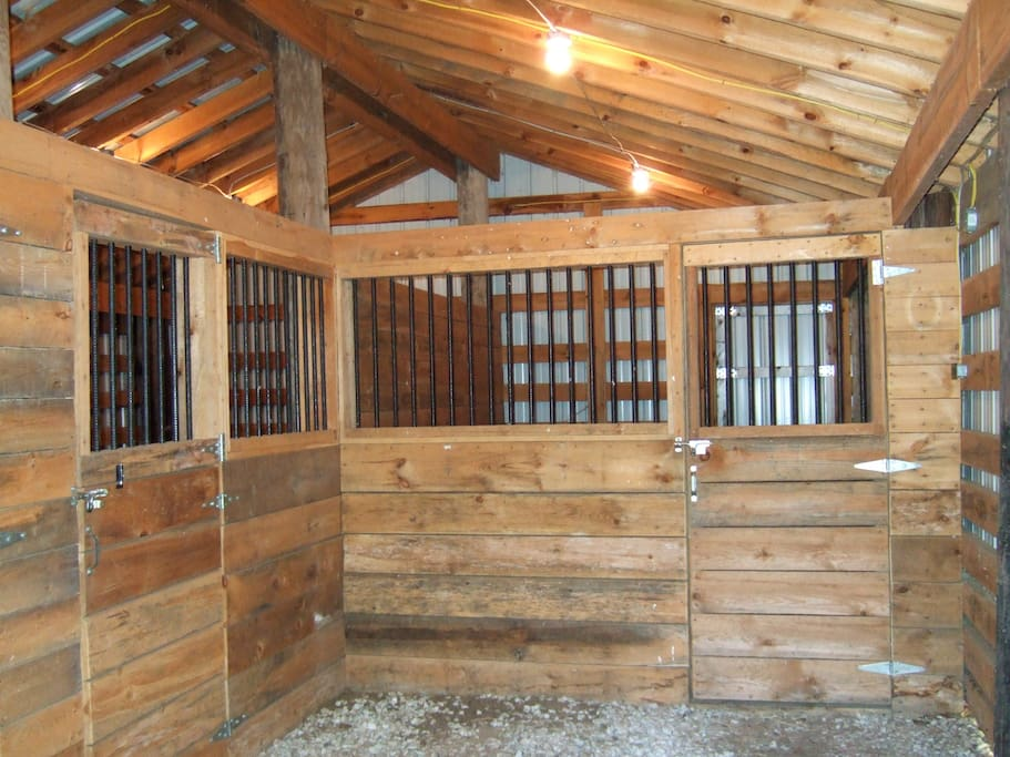 We have a new three stall barn with private paddocks.