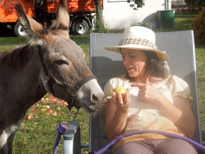 Mit dem Esel kommunizieren