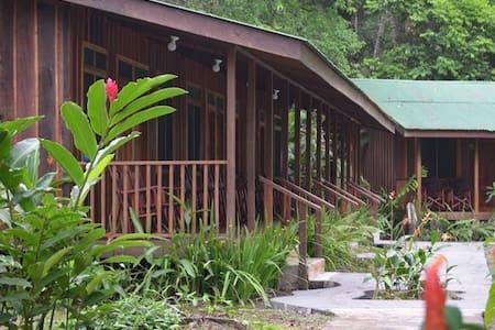 Hotel in Tortuguero National Park - Limón  - Cabin