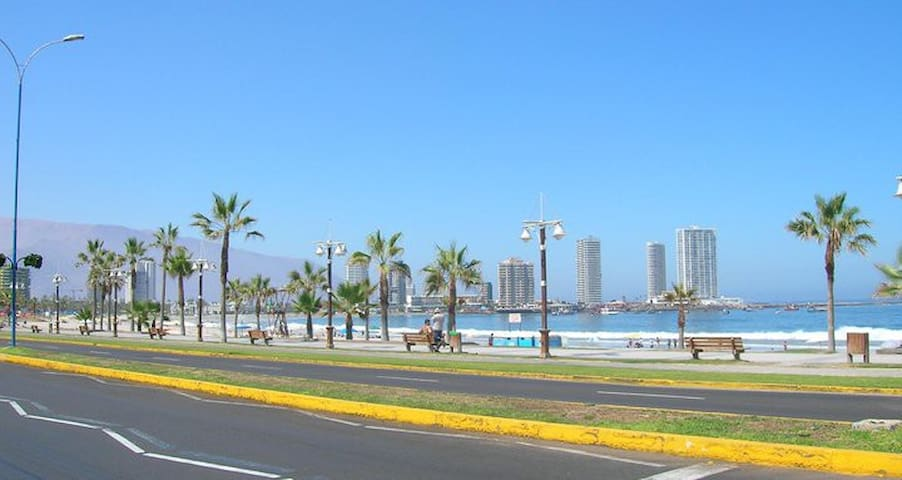 Cavancha beach - convenient option  - Iquique