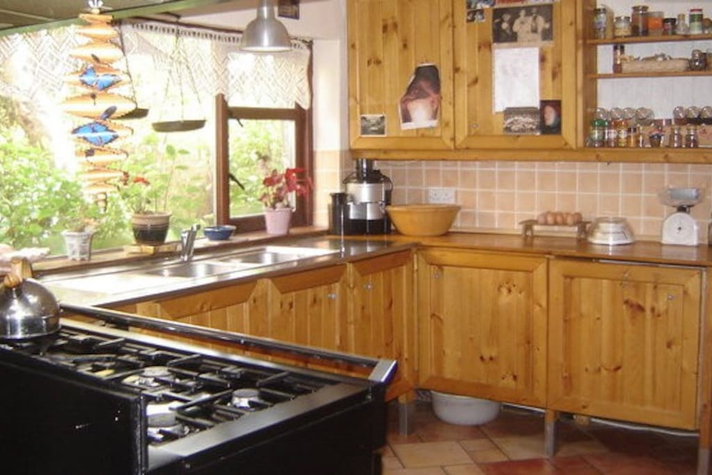 Cooking area in the kitchen