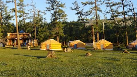 Camp Hirvesteg, regular size ger 2