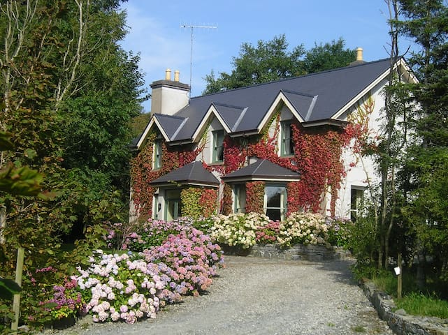 Annilaun Lodge - Galway - House