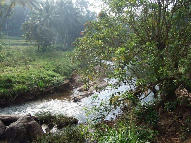 Venture to the river below