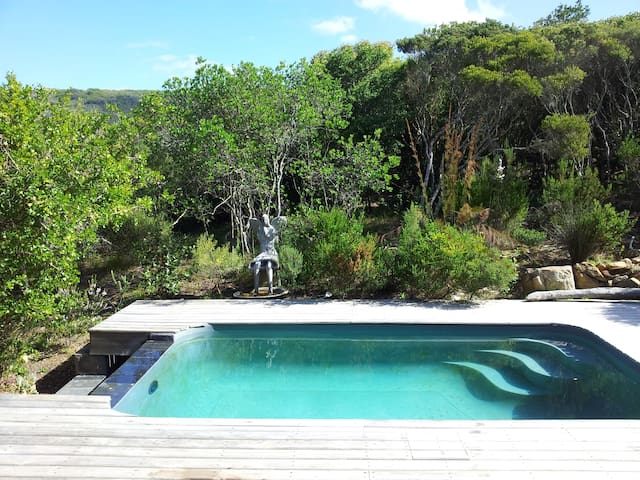 Enjoy swimming on the deck surrounded by bird song, sounds of the ocean and fynbos, the natural vegetation of the Western Cape. safety net available when necessary.