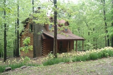A Cozy Cabin in the Ozark Woods - Alpena - Cabin