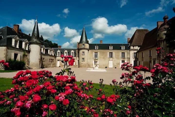 Chateau de Lalande, 'Chambre Rose' - Crozon-sur-Vauvre - Castelo