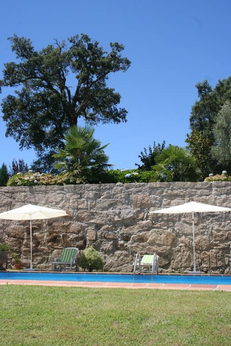 A refreshing bath in a warm summer day, the swimming pool mission
