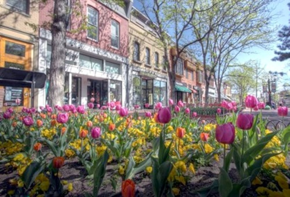 Spring on the Pearl Street Mall.