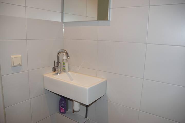 Wastafel met spiegel in de douche