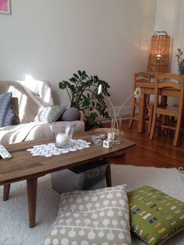 Appartement centre historique - Grenoble - Apartment