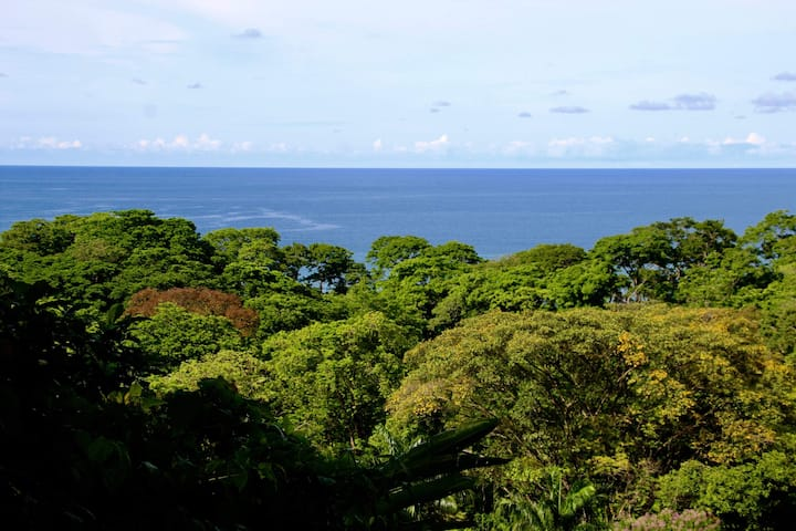 """""""Romantic oceanview with Jacuzzi in Cacao forest"""""""