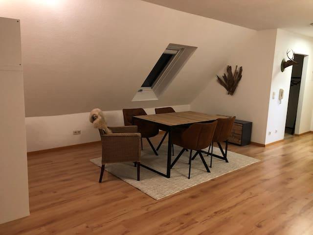 Modernes Appartement mit herrlicher Dachterasse