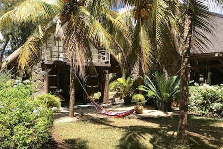 Lodge Bamboo