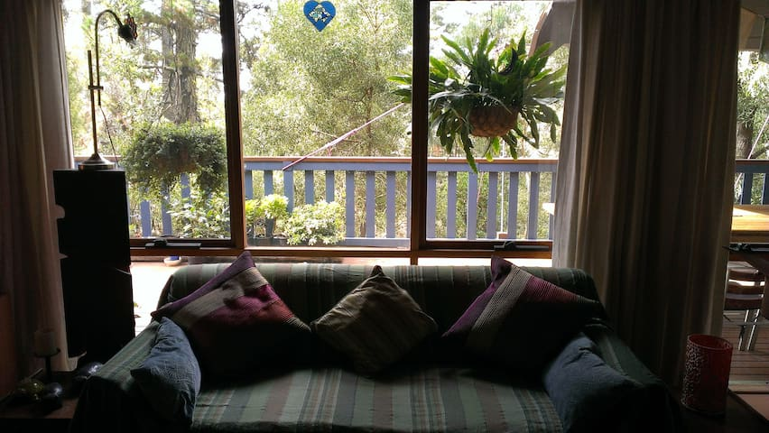 Rooms in lovely Blue Mountains home - Mount Victoria - Dům