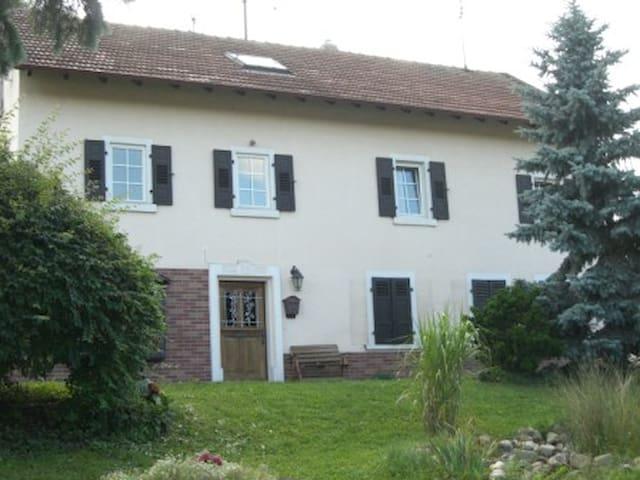 Alte Gärtnerei Wohnung 2 - Waldlaubersheim - Huoneisto