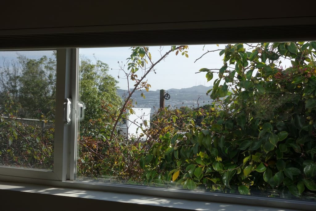 Peekaboo of San Bruno mountains from over the bed.