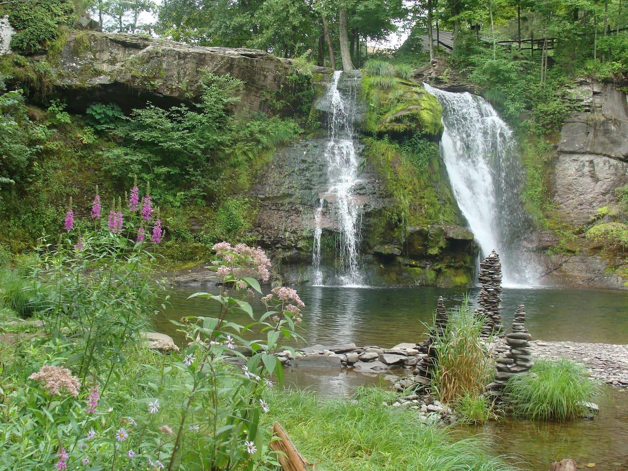 Shinglekill Falls in August