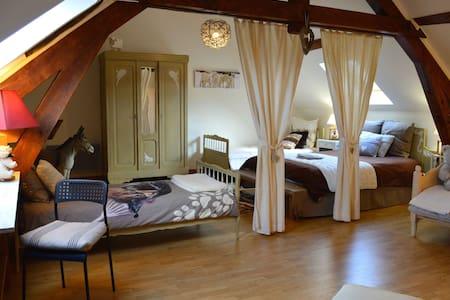 L'Amettoise Chambres d'hôtes - Selles-sur-Cher