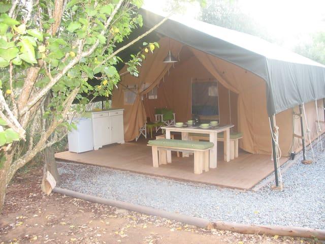 Romantische Oliveira Lodge