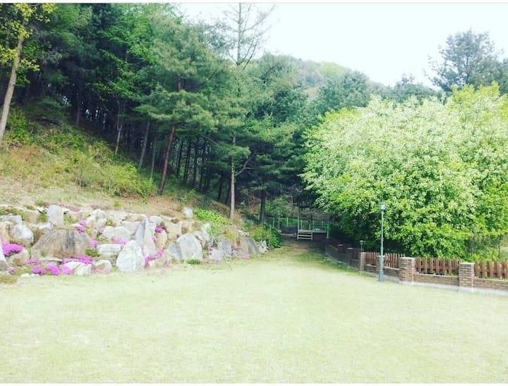 울타리가 있는 넓은 잔디 마당