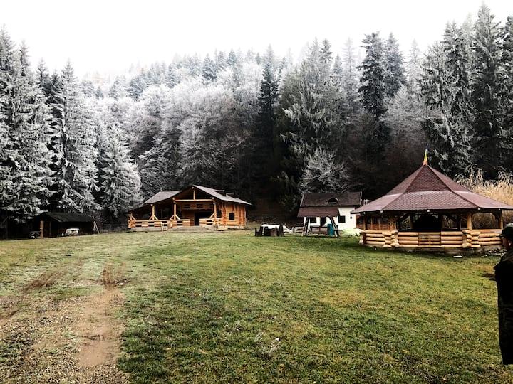 Cabana Raisa - Cozy cabin in Bucovina