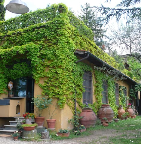 Springtime at the Lemon House - Firenze
