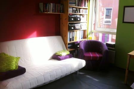 Lichte kamer in Oosterpoortwijk - Szoba reggelivel