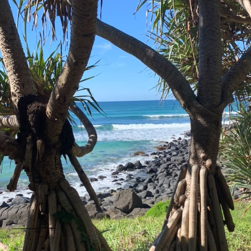 Welcome to world famous Burleigh Heads