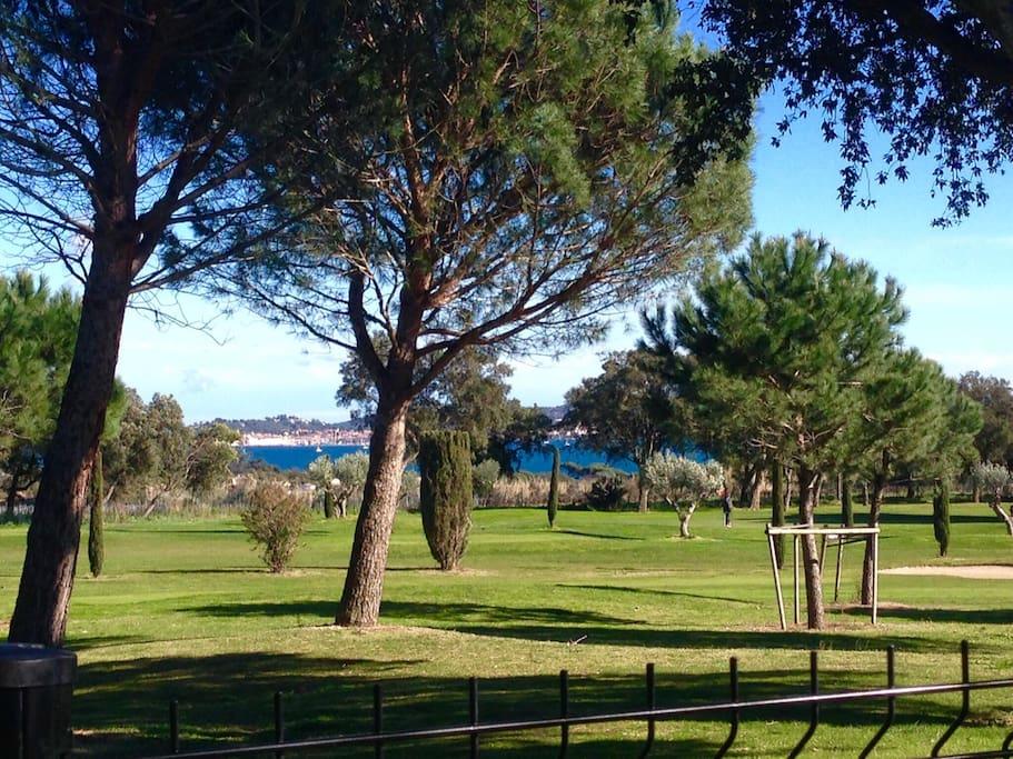 Vue du jardin sur le golf de Beauvallon et le clocher de St Tropez.