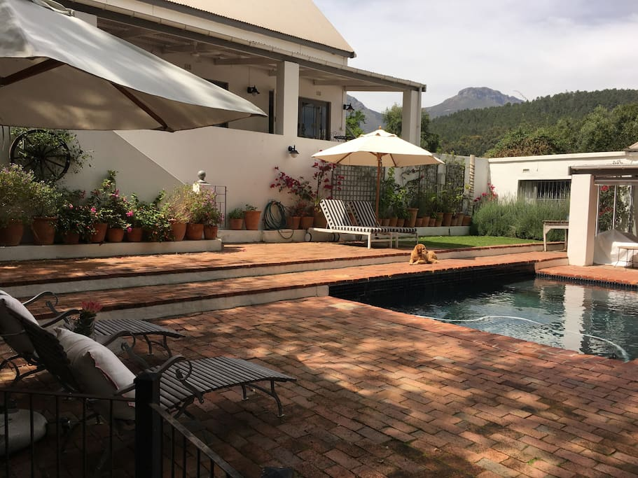 The outside pool area with Lodge and adjacent Farm House