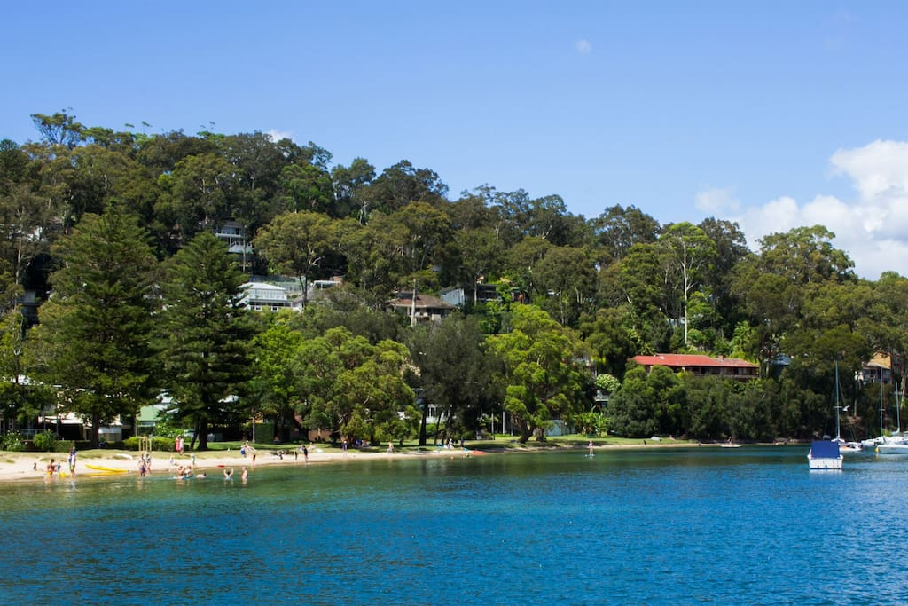 Beautiful Clareville Reserve & Beach, less than 10 min walk from the Cabin