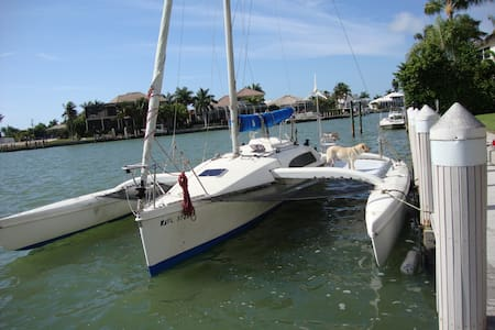 Tri Muirin - Entire Boat - Madeira Beach
